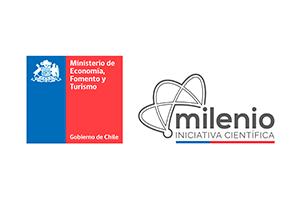 www.iniciativamilenio.cl
